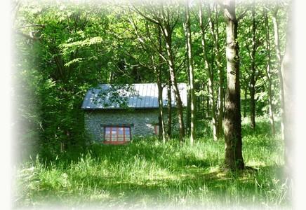 Gite Oloron, Pyrénées Atlantiques (64), Cabane en forêt
