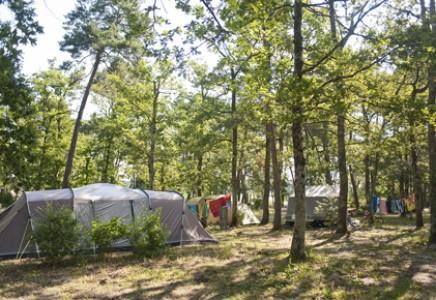 Camping Huttopia Rillé, Indre et Loire, Cabanes, Cahuttes, Roulottes, Tentes